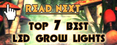 Read next: Best LED Grow Lights on Amazon Reviewed