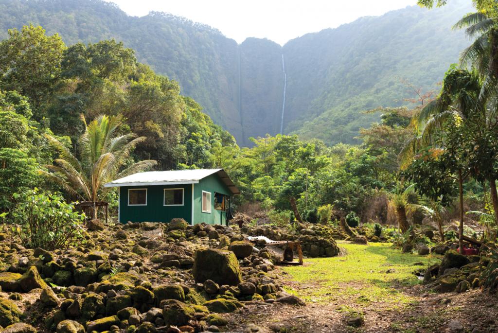 Growing Medical Marijuana in Hawaii