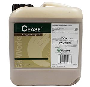 bacillus-subtilis-cease-powdery-mildew