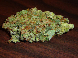 Top Cash Crop Strains for Growers - Sour Diesel Review [GET SEEDS]