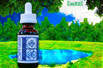 5 Illusions About Cannabidiol - High CBD Hemp Vape Liquid/Oil: A Buyer's Guide