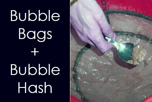 6 Best Bubble Bag Kits Reviewed + How to Make Hash with Ice