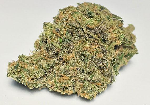 Blue Balls cannabis strain