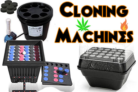 The 3 Best Aeroponic/Hydroponic Cloning Machines For Sale Reviewed + FAQ