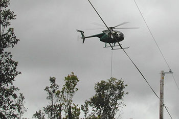 Green Harvest helicopter flying over telephone wires