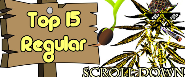 Top 15 Best Regular Seeds