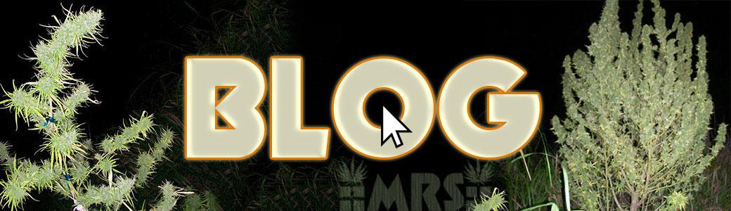 weed-blog