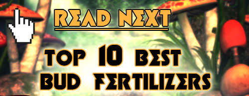 Read next: Top 10 Best Bloom Booster Fertilizers