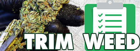 Trim Weed Checklist: scissors and all required supplies for harvest