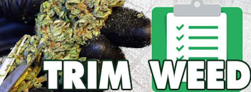 Trim Weed Checklist Scissors Amp Harvest Supplies Guide