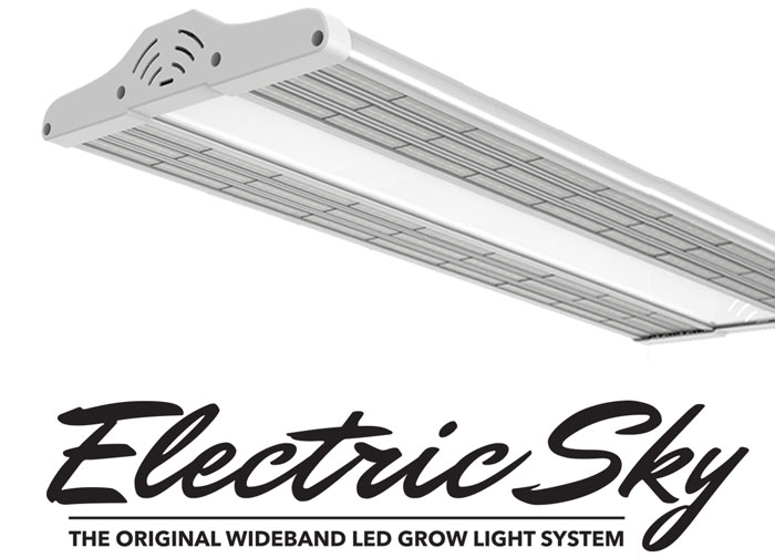 Electric Sky ES300 review