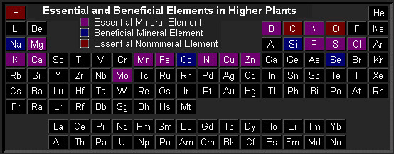 minor and micronutrients plants periodic table chart