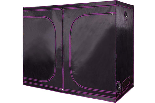 Apollo Horticulture 96x48x80 Grow Tent: Highly Reviewed for Weed Growing
