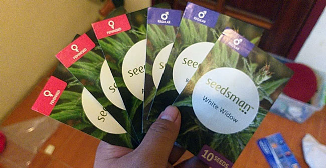 A Seed Shipment from Seedsman