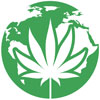 Marijuana Seeds Worldwide Shipping USA included
