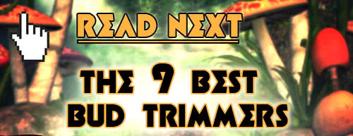 The Best Bud Trimmer Machines - Continue Reading
