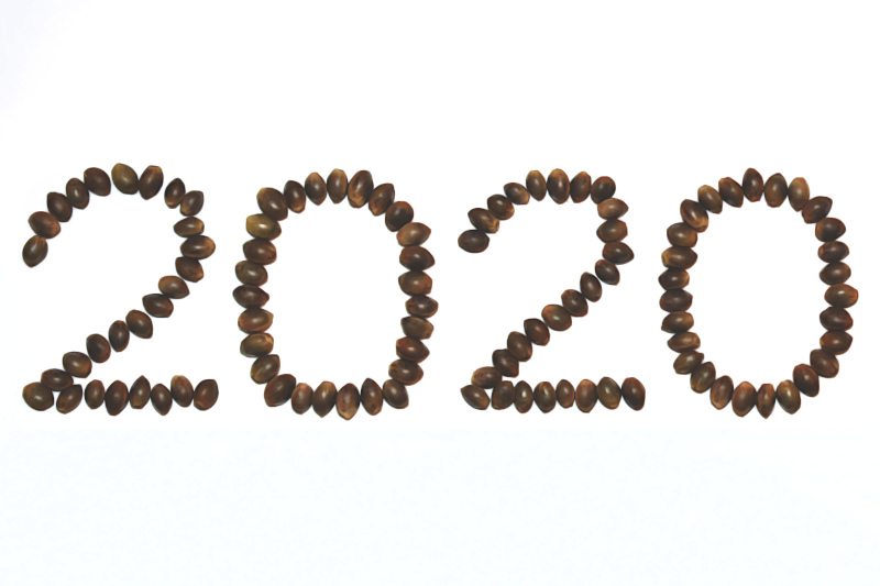 20 New Marijuana Strains for 2020