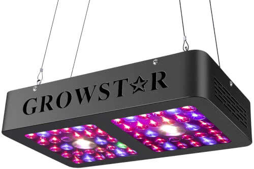 CREE COB LED Grow Light Full-Spectrum 600W Growstar 2021