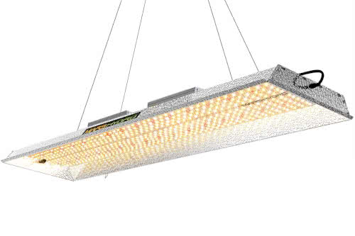 MARS HYDRO TSL 2000W LED Grow Light Best Full-Spectrum