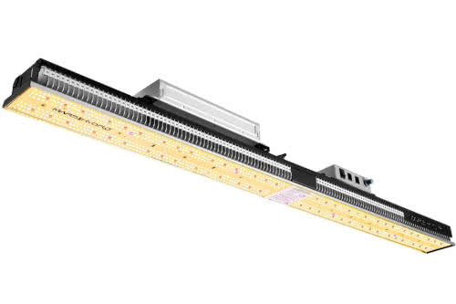 Mars Hydro SP3000 LED Grow Light: Long, Brightest LED Best for Weed Growing in 2021