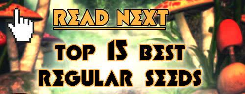 Read next: Top 15 Best Regular Seeds