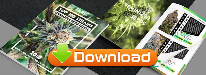 Top 100 Strains Cannabis Seed Guide Free eBook