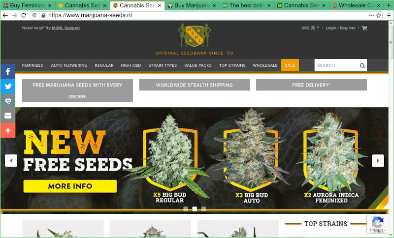 MSNL Seed Bank Review