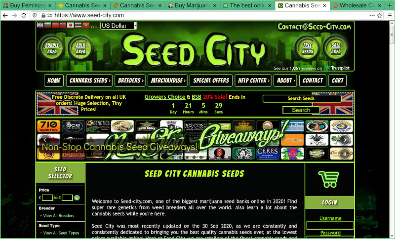Seed City Seed Bank Review