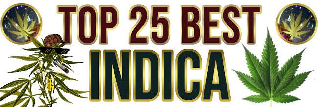 Best Indica Strains List 2021